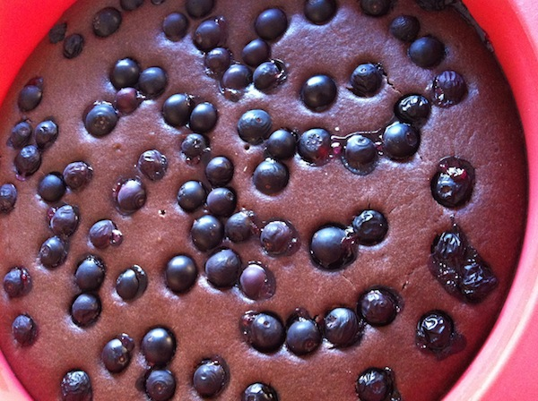 Choc Blueberry Olive Oil Cake